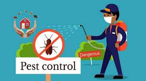 Pest Control AMC